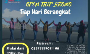 open trip midnight