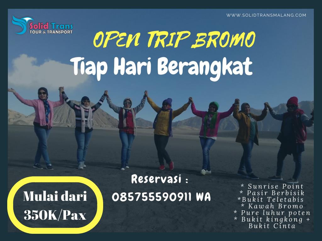 open trip midnight