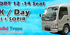 Elf Short 12 sd 14 seat